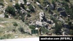 Государственная граница Туркменистана с Ираном