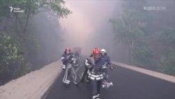 Пожежа на Луганщині: ДСНС задіяла авіацію для гасіння осередків вогню – відео