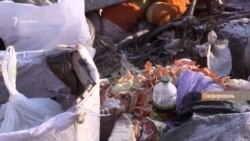 Крым «закапывает» миллиарды в мусор (видео)