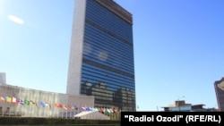 Selia e Kombeve të Bashkuara në Nju Jork
