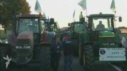 Fransız fermerlər Parisə traktorlarla yürüş edirlər