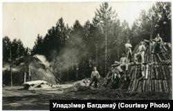 Нарыхтоўка вугалю ў лесе пад Паставамі
