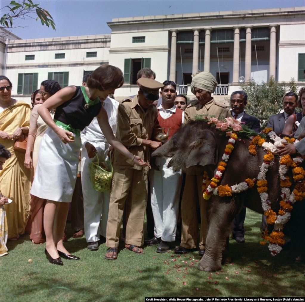 """Before visiting Pakistan, Jacqueline Kennedy also made a tour of India, where this baby elephant was paraded in front of her. Clint Hill says that when the first lady reached out to touch the elephant, the animal """"reacted as if it were being tickled, wrapping its stubble-covered trunk around her hand."""""""