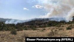 Пожары в Крыму. Иллюстрационное фото