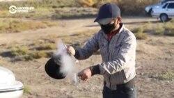 Мигранты из Узбекистана застряли на российско-казахстанской границе