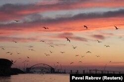 Крым жарым аралы