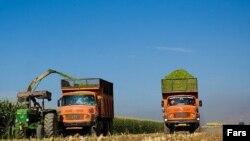 Agricultură în Iran, în apropiere de Teheran
