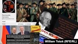 Platforme electorale radicale (Colaj: William Totok)