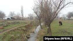 Арык, разделяющий село Багыс. Власти зарегистрировали 17 домов по одну сторону арыка, 190 домов по другую его сторону не внесены в единую базу данных.