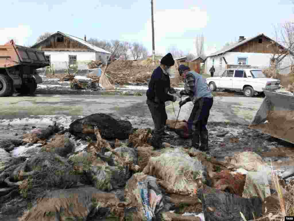 Село Кызылагаш на третий день после наводнения. В Алматинской области обильные осадки и таяние снега привели в ночь на 12 марта к размыву дамбы и прорыву плотины Кызылагашского водохранилища, в результате чего затопило село Кызылагаш.
