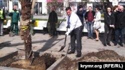 Андрій Ростенко садить на набережній Ялти пальму, 12 квітня 2017