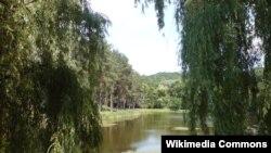 Галасееўскі парк у Кіеве
