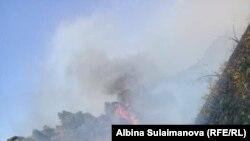 В Таласской области продолжает гореть пастбище