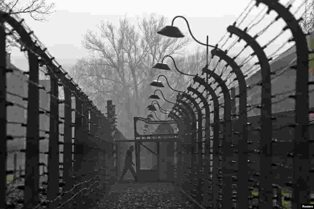 In Poland, a visitor walks between electric barbed-wired fences at the Auschwitz-Birkenau memorial and former concentration camp on November 18. (Reuters/Kacper Pempel)