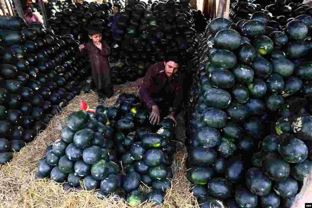 Пакістанец прадае кавуны ў Карачы