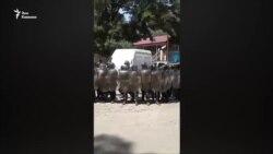Противостояние в селе Хаиши