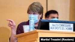 میشل باشله، کمیسر عالی حقوق بشر سازمان ملل