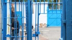 Ваша Свобода | Закон Савченко: скасувати чи скорегувати?