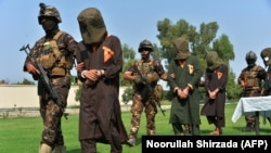 Afghan security personnel escort arrested alleged Taliban and Islamic State militants during an operation in Jalalabad on October 1.
