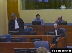 Mladićeva obrana, 19. siječnja 2012.