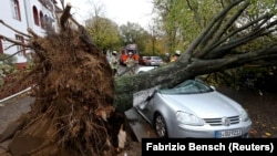 Firefighters stand next to a car damaged by a tree that fell during Storm Herwart in Berlin on October 29.