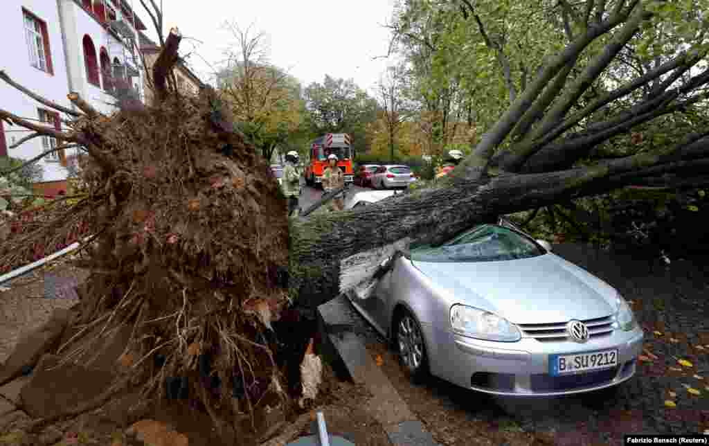 Firefighters stand next to a car damaged by a tree that fell during Storm Herwart in Berlin on October 29. (Reuters/Fabrizio Bensch)