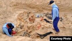 منقبون في مقبرة جماعية لضحايا الإنتفاضة الشعبانية
