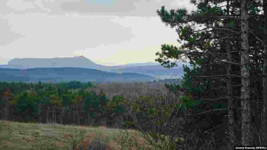 С холмистой поляны хорошо виден Чатыр-Даг со снежной проседью
