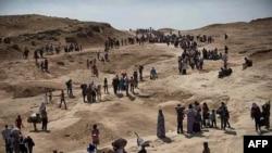 Беженцы из Синджара, захваченного боевиками ИГ, идут в сторону Курдистана. Август 2014 года.