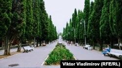 Знаменита кипарисова алея або алея Аполлонів у Сімеїзі простяглася від вілли «Ксенія» до санаторію «Юність»