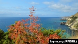 Осенние краски мыса Лермонтова (фотогалерея)