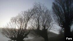 جنگل ابر در شاهرود