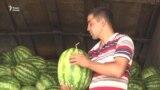Цены кусаются: дыни и арбузы не по карману таджикистанцам