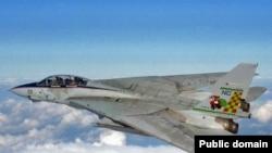 اداره مهاجرت و گمرگ، کيت های طراحی شده هواپيمای جت F-14، که اين ايرانی به همراه همسرش تری رپيک طيب برای صدور به ايران آماده کرده بود را در ماه فوريه سال ۲۰۰۶ توقيف و ضبط کرد.