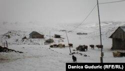 Sneg u Sjenici, arhivska fotografija