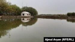 آرشیف، یک مرکز پرورش ماهی در افغانستان