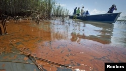 A boat passes through heavily oiled marsh near Pass a Loutre, Louisiana on May 20.