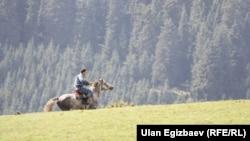 Кыргыз тоолору.