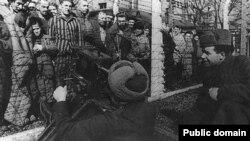 Визволення в'язнів Аушвіцу. Січень 1945 року Знімає Кенан-Кутуб-заде, радянський військовий оператор, один із 4-х операторів, які відзняли звільнення нацистського концтабору