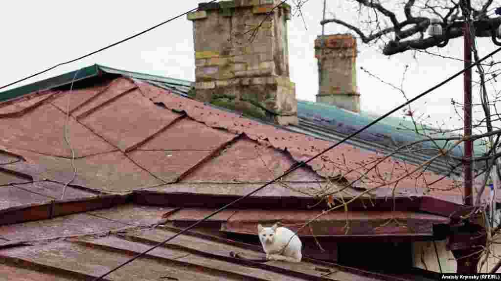 На крыше дома своего