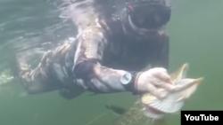 От редакции: фотографии рыбалки Путина появились на утро после нашего эфира