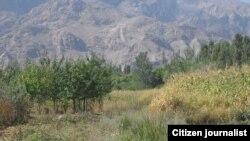 Tajikistan -- ТОЧИКИСТОН