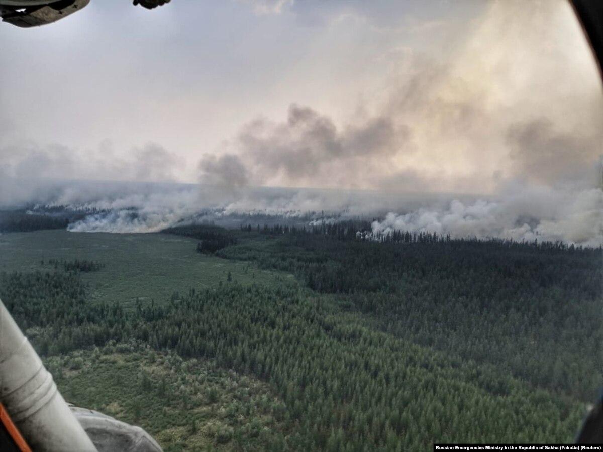 В России посчитали убытки от лесных пожаров