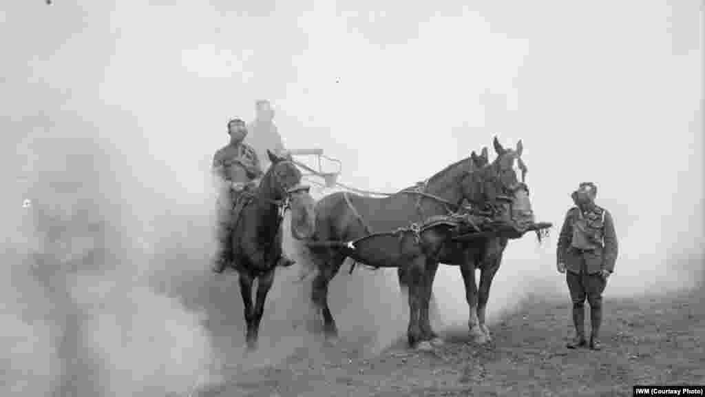 Мужчины и лошади из Британского военного корпуса в Великобритании
