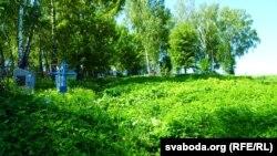 Пасьля дажджоў добра ўзьнялася трава