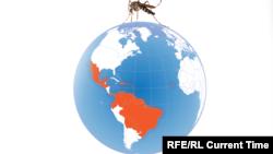 Zika Virus Infographic Promo RUS