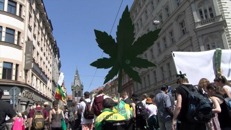 Što bi donijela legalizacija kanabisa u Hrvatskoj?