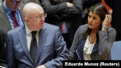 United States Ambassador to the United Nations Nikki Haley and Russian Ambassador to the United Nations Vasily Nebenzya are seen before the United Nations Security Council meeting.