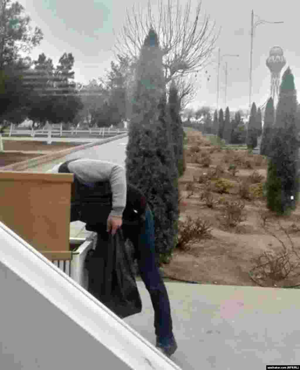 Молодой человек извлекает содержимое мусорного ящика, Ашхабад, январь, 2020