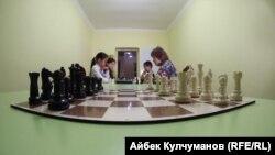 Шахмат ийримине барган балдар